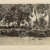 [0144 - Arno Atoll, Marshall Islands]