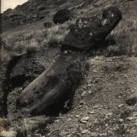 Partially excavated Image. Easter Island