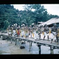 [Kaya Pulau, Jayapura, West Papua (Indonesia)?] [450]