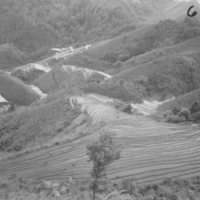 631. Lo Mong : terraces