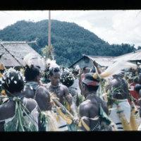 [Kaya Pulau, Jayapura, West Papua (Indonesia)?] [434]