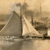 Wilder's steamship Company?