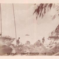 Marines on beach, landing craft, ironwood tree