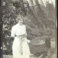 Woman Wearing a Dress Standing in Front of Palm Trees