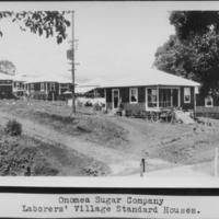 Onomea Sugar Company Laborer's Village Standard House
