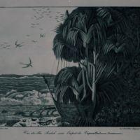 Vue des Iles Radak sous l'aspect du Vaquois (Pandanua…