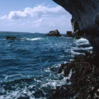 Algae covered rocks under overhanging sea cliff.…