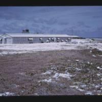 Eniwetok (Fred) Island - same stand as previous slide…