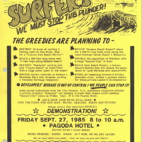 Surfers - we must stop this plunder!
