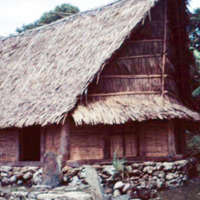 Yap Museum. Mar. 1951