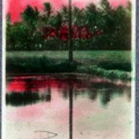 Landscape Painting - 1 Palm