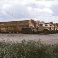 Sugarcane farm trucks
