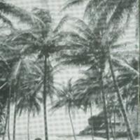 [084] Lawai Beach
