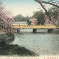 Cherry Blossoms of Benkei Bridge, Akasaka, Tokyo