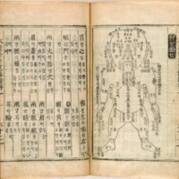 Chŭngsu Muwŏnnok Taejŏn [Book of Forensic Medicine]