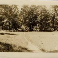 [0120 - Arno Atoll, Marshall Islands]