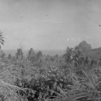 View of Pagan Island, Feb. 1946. (N-4093.17).