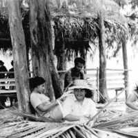 Young women weaving thatch. (N-20A).
