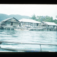 [Kayupulau, Jayapura, Papua (Indonesia)?] [397]