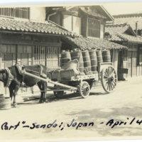 A cow hauling a cart of waste barrels, Sendai Miyagi…