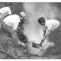 Hawaii War Records Depository HWRD 1354