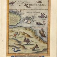 Novae Guineae forma & situs