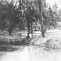 3 people beside a stream footbridge in background