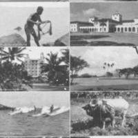 [078] Hawaiian Photo Collage