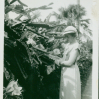 [108] Woman Standing by Wall of Blooming Cereus