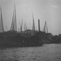 301. Fish nets
