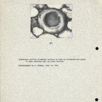 Physiology-Soils PM Negative 071