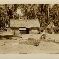 [0025 - Arno Atoll, Marshall Islands]