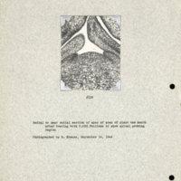 Physiology-Soils PM Negative 115