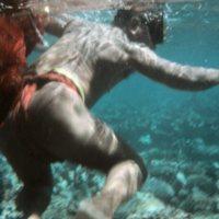 Man Swimming in Reef