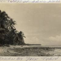 Pictures of Arno Atoll 1950