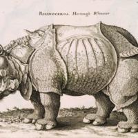 Historiae Naturalis de Quadrvpetibus Libri cum Aeneis…
