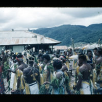[Kayupulau, Jayapura, Papua (Indonesia)?] [407]