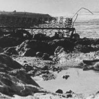 Garbage (bedspring) on shore