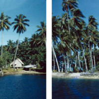 Banga-Bilua Island near Kolombangara