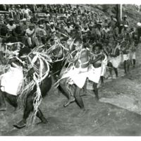 Natives of Florida Is, Solomons entertain with dances…