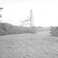 003. Pagoda on Honam Island