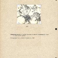 Physiology-Soils PM Negative 141