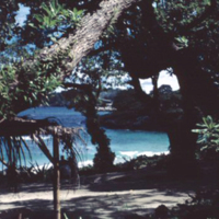 View from dining rm. SCAPLO, Angaur [Ngeaur, Palau].…