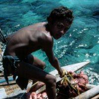 Boy Storing Large Net  of Fish