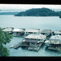 [Kayupulau, Jayapura, Papua (Indonesia)?] [384]