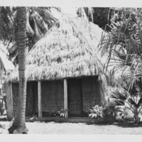 Grass Thatched Building