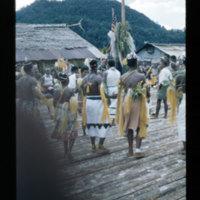 [Kaya Pulau, Jayapura, West Papua (Indonesia)?] [447]