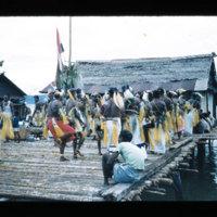 [Kaya Pulau, Jayapura, West Papua (Indonesia)?] [455]