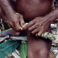 Man Weaving Palm Leaves - 06