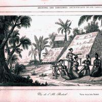 Archipel des Carolines; Vue de l' Ile Radak